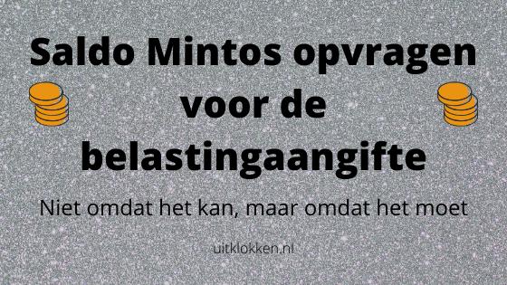 Saldo Mintos opvragen voor de belastingaangifte